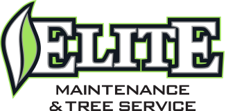 Elite Maintenance & Tree Service full color logo